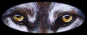 wolf05.jpg